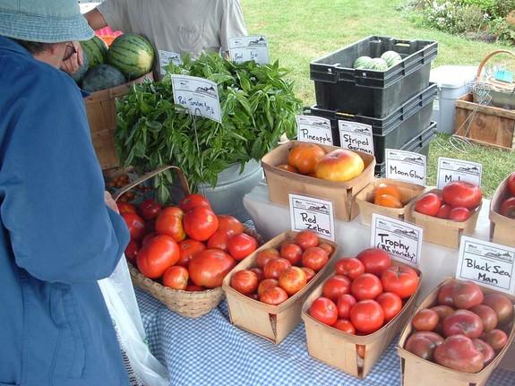 Organic produce of Casey Farm Saunderstown, Rhode Island